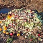 3,6 millones de toneladas de alimentos se pierden y desperdician en Boyacá, Cundinamarca y la región central
